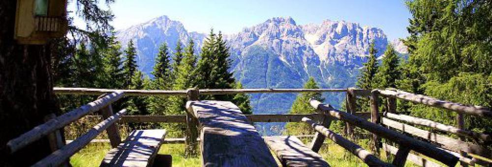 sommerfrische,, nationalpark hohe tauern, kärnten, osttirol, österreich Natur Aktiv Hotel Tauernstern-Sommerfrische Arrangement3
