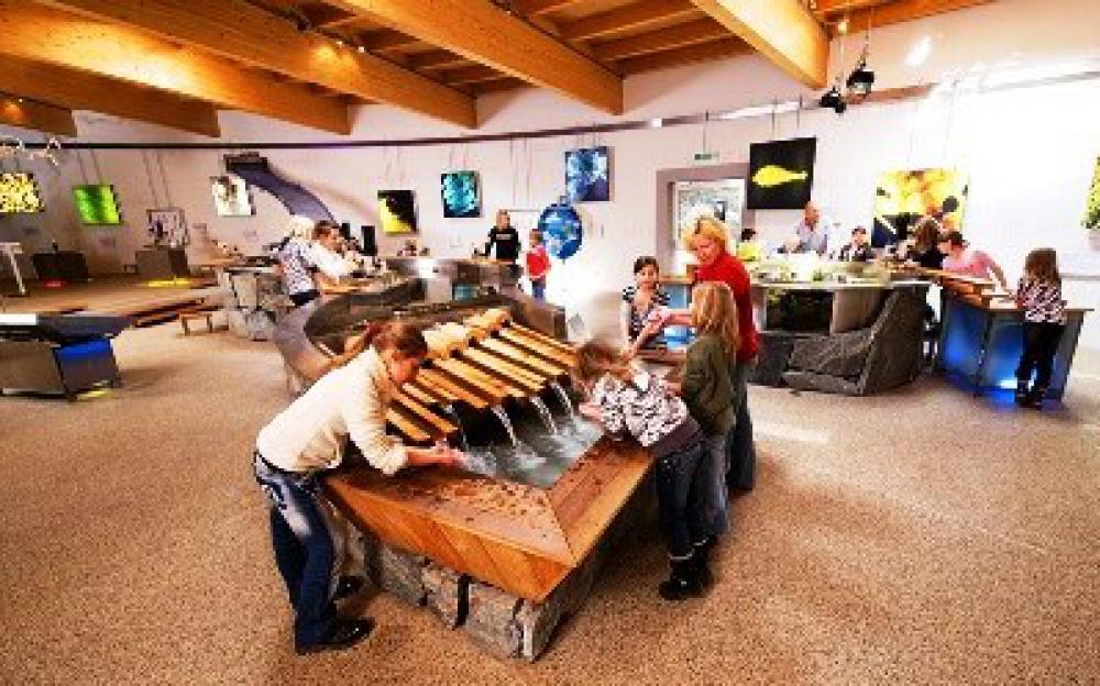 Natur Aktiv Hotel Tauernstern-Ausflugsziele-sommerfrische, nationalpark hohe tauern, kärnten, osttirol, österreich Nationalparkzentrum Mallnitz