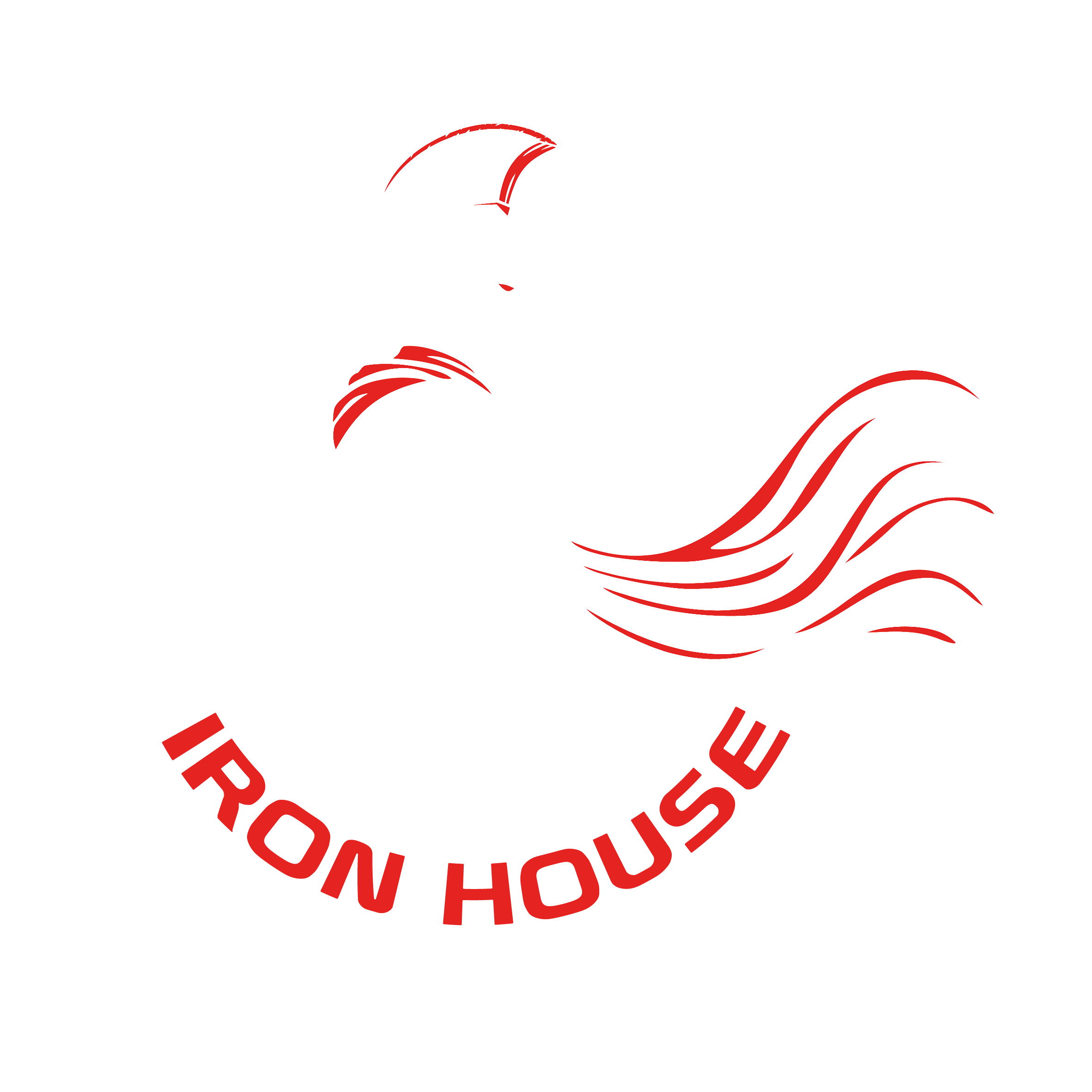 Non Stop Fitness - Iron House