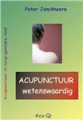 ACUPUNCTURE - interesting - Peter Jonckheere