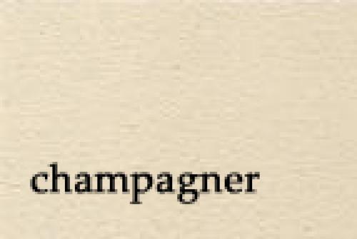 Lehmbaustoffe Pirker Lehmputz champagner