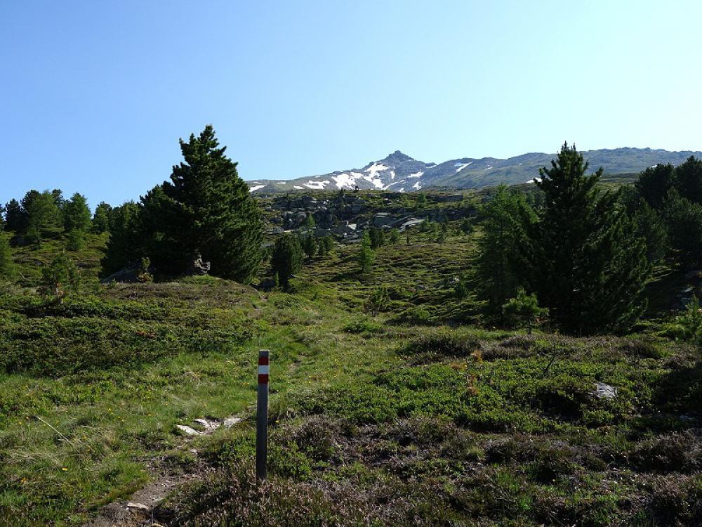 Wanderroute Eckkopf wanderurlaub, wandern, nationalpark hohe tauern, kärnten, osttirol, österreich – Natur aktiv Hotel Tauernstern