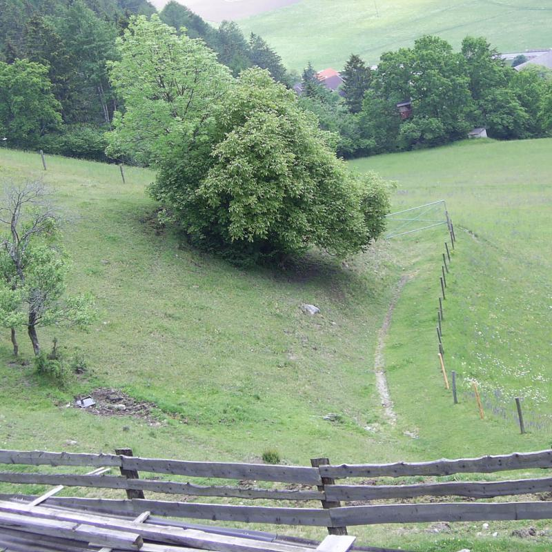Rundblick Hof (9)