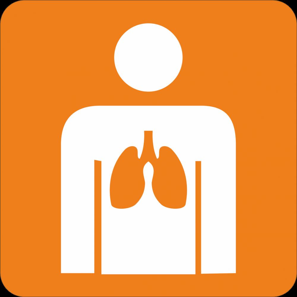 Piktogramm Lunge