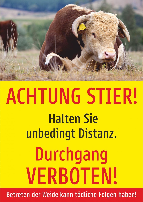 Achtung Stier! Durchgang verboten!
