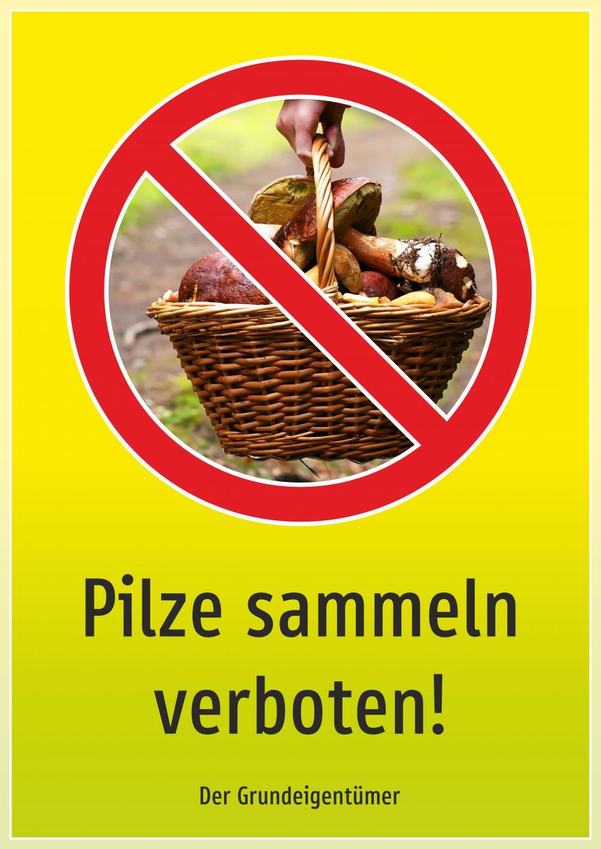 Pilze sammeln verboten