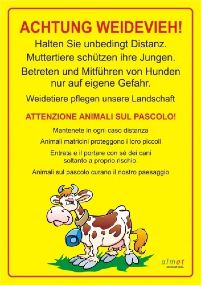 Beware of cattle!