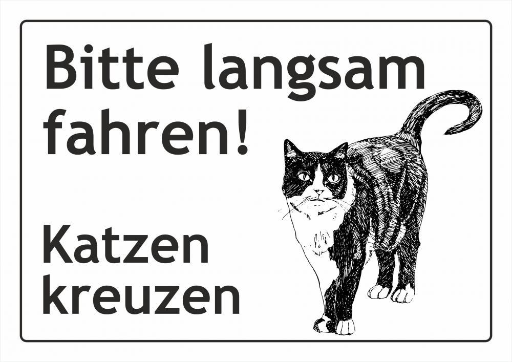 Katzen kreuzen Fahrbahn